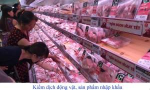 Thủ tục hành chính đăng ký Kiểm dịch động vật, sản phẩm động vật trên cạn nhập khẩu