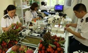 Thủ tục đăng ký kiểm dịch thực vật