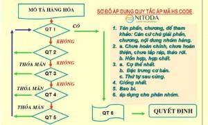 6 quy tắc áp mã HS code