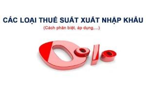 Quy định hiện hành về các loại thuế suất thuế nhập khẩu