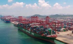 Miễn thuế xuất khẩu